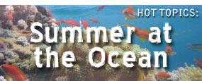 Summer at the Ocean